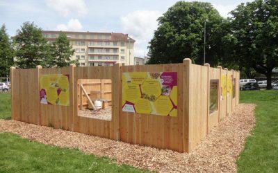 Construction rucher pédagogique